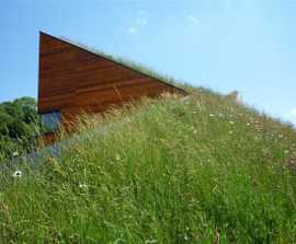 Wildflower and Meadow Grass green roof mats, Landhouse