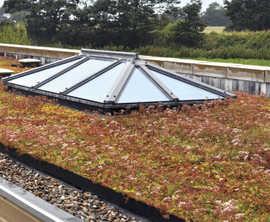 Enviromat sedum matting for green roofs