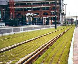 Greenspace solution for Metrolink - Salford Quays