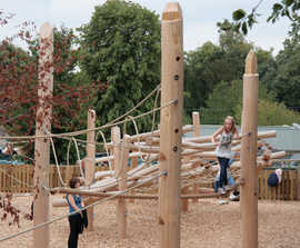 Timber Climbing Forest